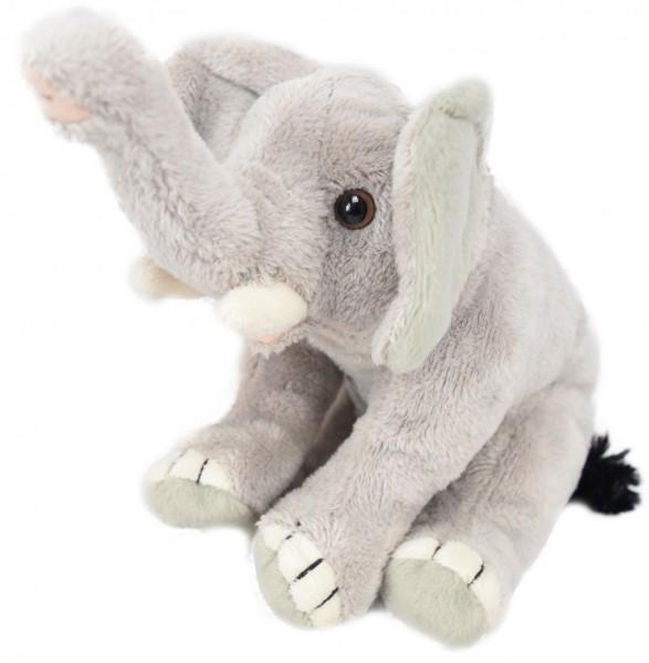 M31 Hathi - der kleine Elefant - nur online